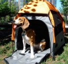 Pets of Norway og UPet Pop-up telt Beagle thumbnail