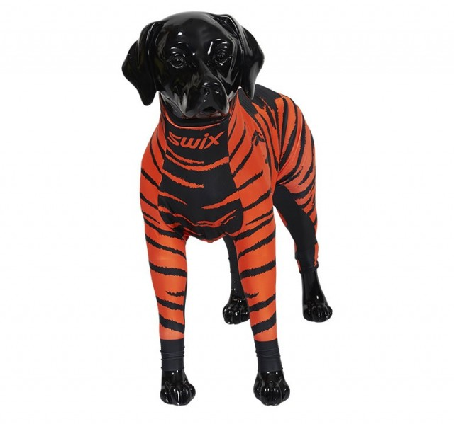 "Swix hunedress i lycra. Motiv ""Orange"". Selges kun hos Pets of Norway - If pets could choose"