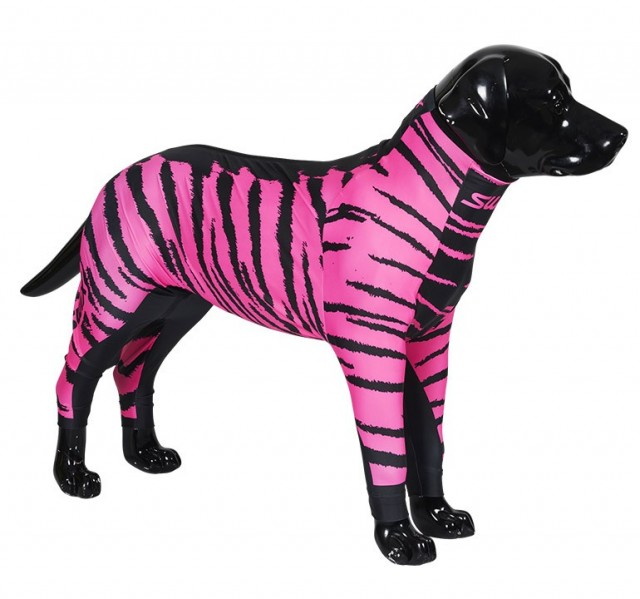 "Swix hunedress i lycra. Motiv ""Rosa"". Selges kun hos Pets of Norway - If pets could choose"